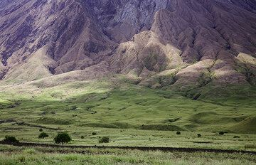 The ash-covered steep slope of Lengai with its deep erosion gullies. (Photo: Tom Pfeiffer)