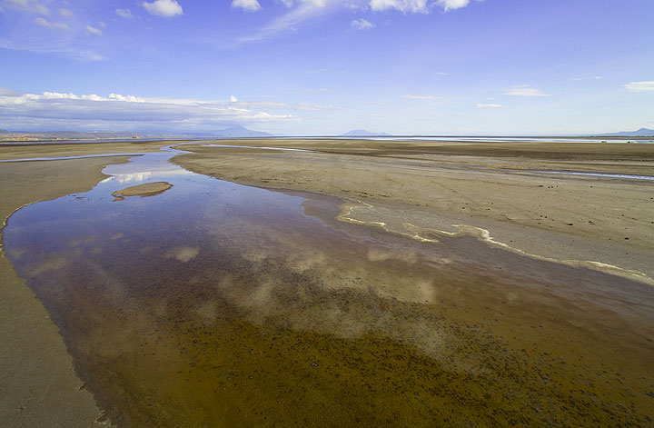 Near the shore of Lake Natron, an alternating area of small creeks, ponds and mud.  (Photo: Tom Pfeiffer)