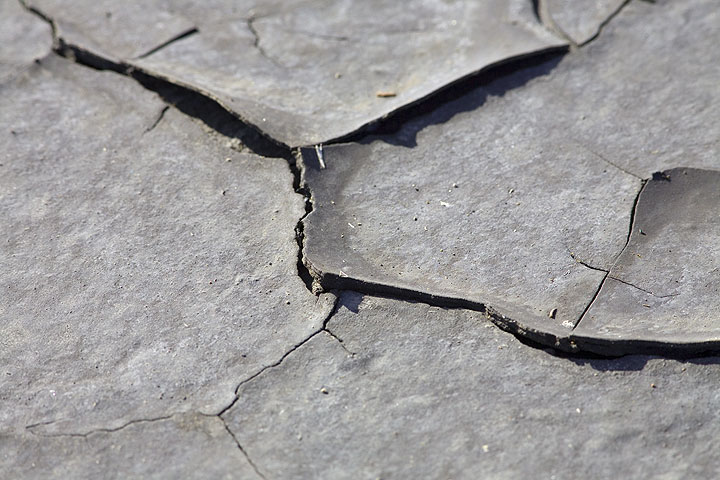 Small cracks on a drier section on the muddy surface of the lakeshore. (Photo: Tom Pfeiffer)