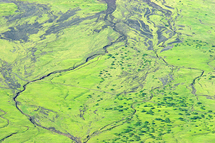 The dirt road leading to Lake Natron is seen from above. (Photo: Tom Pfeiffer)