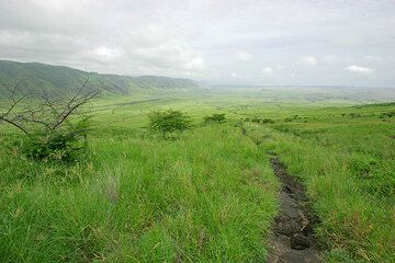 The lower part of the trail on the way back down towards Lake Natron. To the left, the wall of the western escarpment of the Rift Valley. (Photo: Tom Pfeiffer)