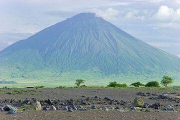 Ol Doinyo Lengai volcán visto desde la sabana cerca de Lago Natron. El hornito altura T49b en su cráter activo del Norte puede verse claramente.... (Photo: Tom Pfeiffer)