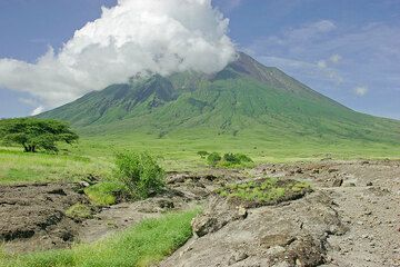 A dry river at the feet of Lengai volcano (Photo: Tom Pfeiffer)