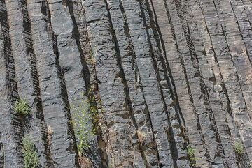 The regularity of the lava columns in this place is amazing. (Photo: Tom Pfeiffer)