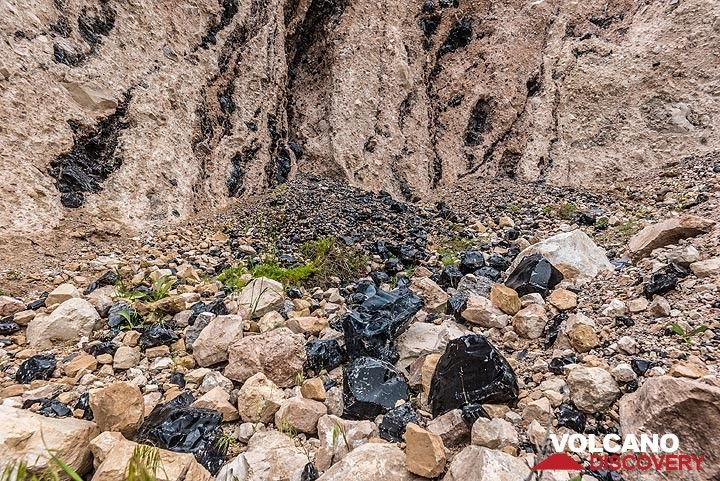 Obsidian veins in the lava flow breccia and pieces on the ground. (Photo: Tom Pfeiffer)