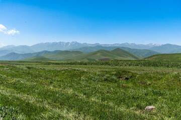 A day later, we are moving towards Tatev in the SE of the country. Some impressions of the volcanic landscape near Vorotan pass with the 3000+ m high chain of the Transcaucasus mountains in the background to the S. (Photo: Tom Pfeiffer)