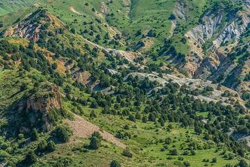 At approx. 2000 m altitude, grass and low bushes cover most areas that are not too steep. Their colors play with orange, brown and gray colors of the sedimentary rocks. (Photo: Tom Pfeiffer)