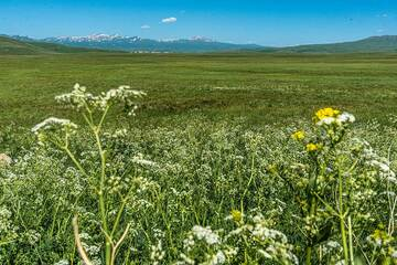 Vast farmland covers most of the area between the Selim pass and Lake Sevan (Photo: Tom Pfeiffer)