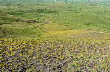 Gently rolling landscape of the slopes of Armaghan (Photo: Tom Pfeiffer)