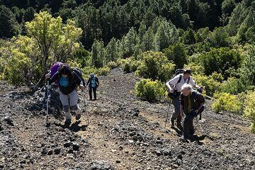The group is ascending onto the craters of Tanganasoga volcano on El Hierro island. This volcano could erupt again and in the last years many earthquakes were recorded near it! (Photo: Tobias Schorr)