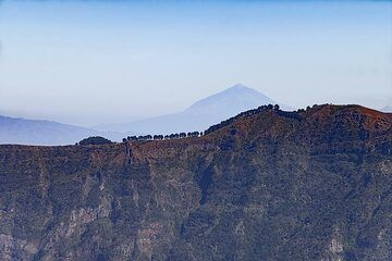 View over the El Golfo ridge towards the huge volcano Teide on Tenerife island. (Photo: Tobias Schorr)