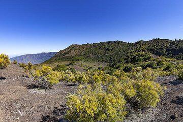 The landscape around the Tanganasoga volcano on El Hierro island. (Photo: Tobias Schorr)