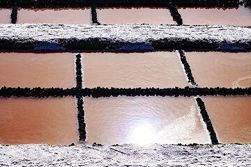 The salt collecting facilities on La Palma island. (Photo: Tobias Schorr)