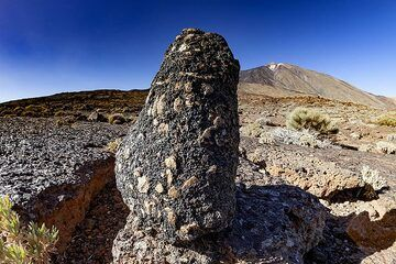Huge feldspar crystals in a lavaflow of Teide volcano. Tenerife island. (Photo: Tobias Schorr)