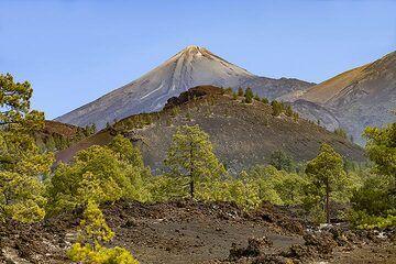 View from Montaña Sámara towards the huge Teide volcano on Tenerife island. (Photo: Tobias Schorr)