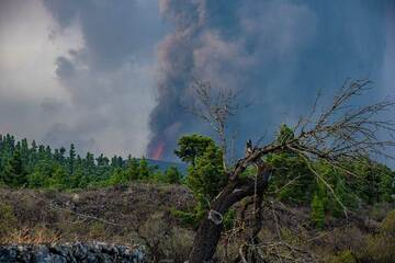 The eruption seen from the north, in the outskirts of Tacande (Photo: Tom Pfeiffer)