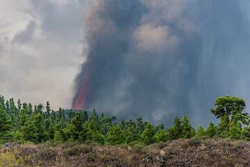 Curtains of ash falling from the eruption column (Photo: Tom Pfeiffer)