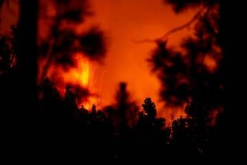 26 Sep morning: Lava fountain seen from a forested area northwest of the cone. (Photo: Tom Pfeiffer)
