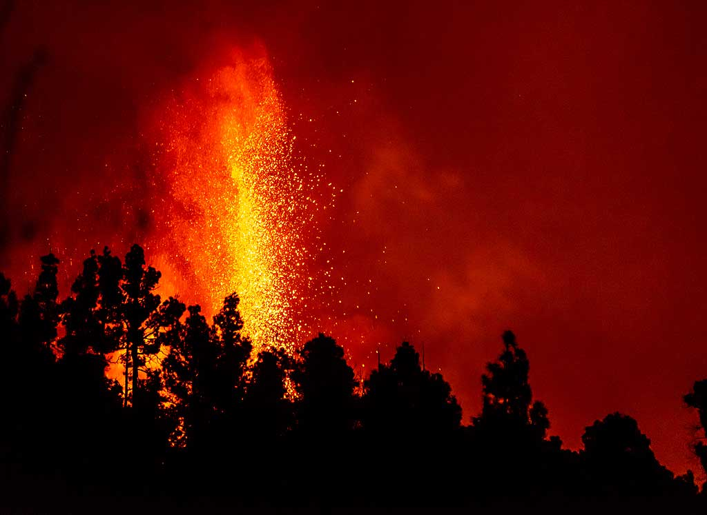 Lava fountain rising behind rows of pine trees. (Photo: Tom Pfeiffer)