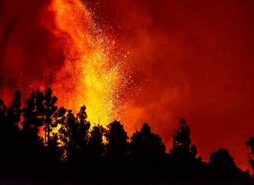 Lava fountain behind the forest (Photo: Tom Pfeiffer)
