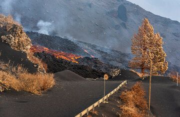 The active lava flow crossing the road to upper El Paraiso. (Photo: Tom Pfeiffer)