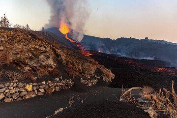 Lava flow crossing the road (Photo: Tom Pfeiffer)