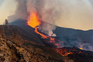 View along the active lava flow towards the vents with vigorous lava fountain. (Photo: Tom Pfeiffer)