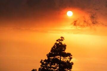 Sunset filtered by the hazy atmosphere dense with ash. (Photo: Tom Pfeiffer)