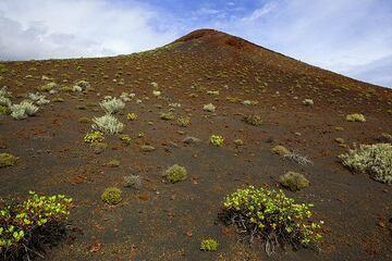 Cinder cone on the south rift zone near La Restina. (Photo: Tom Pfeiffer)
