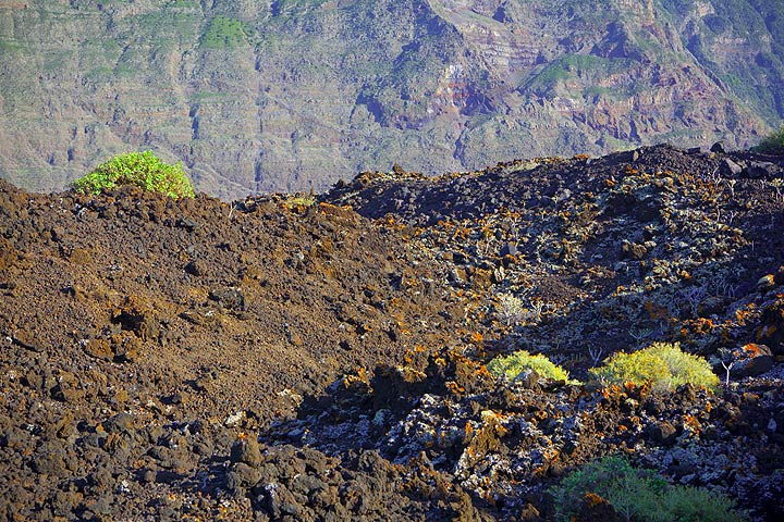 A less than 10,000 years old aa lava flow in the coastal flat of El Golfo. (Photo: Tom Pfeiffer)