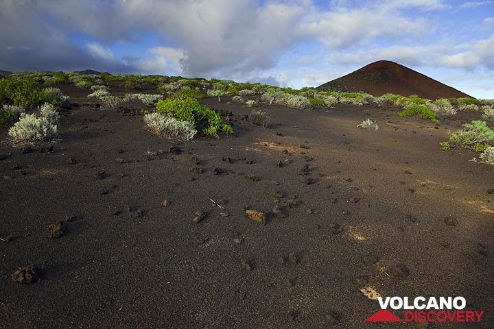 Lapilli-covered ground near a geologically young cinder cone. (Photo: Tom Pfeiffer)
