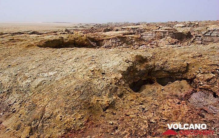 Другая экскурсия ведет нас к вулкану Dallol: вулкан скрыта под толстым соли, но куполов слоями соли выше его до широкого плоского холма. Эрозия вырезает каньоны в соли флангов. (Photo: Tom Pfeiffer)