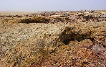 Ein Tagesausflug bringt uns zum Dallol Vulkan in der Mitte des Salzsees. Der Vulkan hat das Salz zu einem flachen breiten Schild angehoben. An den Flanken hat Erosion kleine Canyons in die Salzschichten gegraben. (Photo: Tom Pfeiffer)
