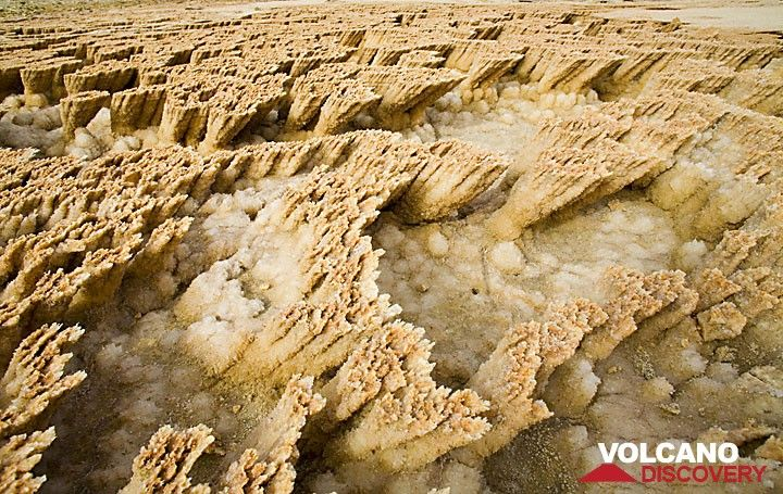 Yellow salt crusts at Dallol, Ethiopia (Photo: Tom Pfeiffer)