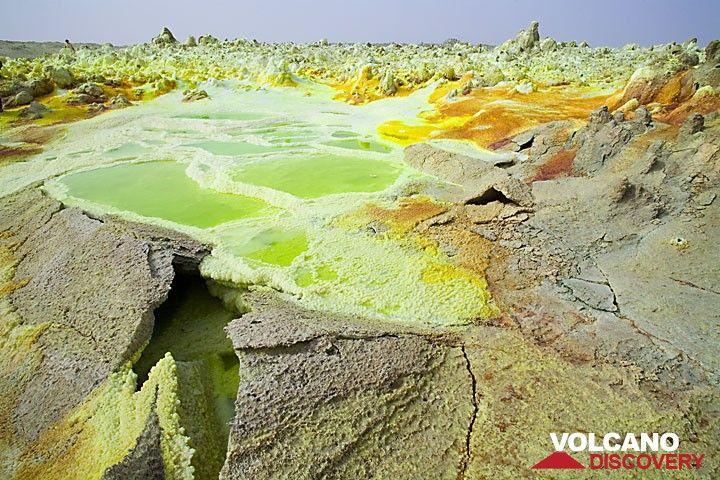 Grüne giftige Säuretümpel, rote und gelbe Schwefelablagerungen, dünne, gefährliche Krusten - einige der Zutaten am Dallol.  (Photo: Tom Pfeiffer)
