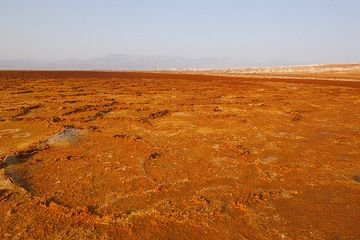 The dry salt crust of the salt lake is colored red from dust and orange salts. The high walls of the Rift Valley are in the background. The the right; the eroded salt towers on the slopes of Dallol hill are seen. (Photo: Tom Pfeiffer)