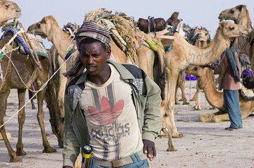 Es wird später Vormittag und die Kamelbeitzer werden ungeduldig, ihre Kamele zu beladen. (Photo: Tom Pfeiffer)