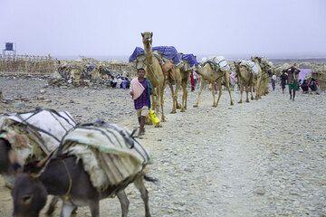 ethiopia_e37253.jpg (Photo: Tom Pfeiffer)