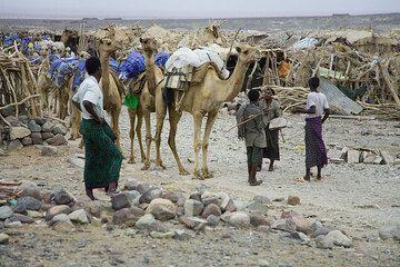 ethiopia_e37262.jpg (Photo: Tom Pfeiffer)