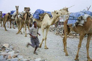 ethiopia_e37267.jpg (Photo: Tom Pfeiffer)