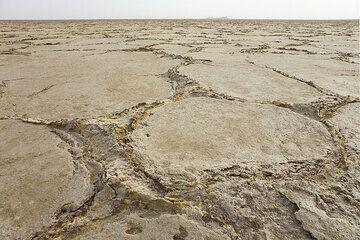 ethiopia_e37279.jpg (Photo: Tom Pfeiffer)