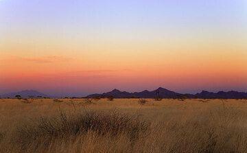 Sunset mood on the flat savanna of the Awash Natl. park (Photo: Tom Pfeiffer)