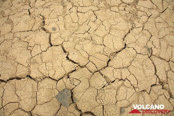 Mud cracks. (Photo: Tom Pfeiffer)