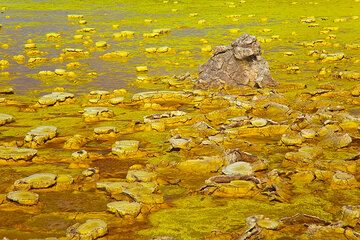 Old salt hornitos rise above the new lake of yellow salt crust (Photo: Tom Pfeiffer)