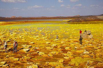 The group exploring the yellow lake at Dallol (Photo: Tom Pfeiffer)