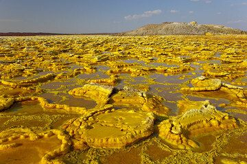 The yellow salt flat, partly under water, at Dallol (Photo: Tom Pfeiffer)