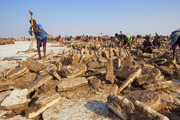 First the salt is broken with axes and levers, and then different workers shape it into regular blocks to be loaded on to the camels. (Photo: Tom Pfeiffer)