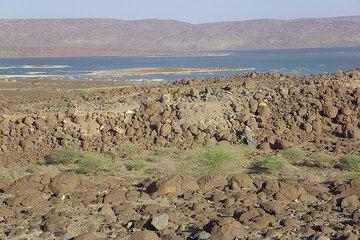 ethiopia_g10218.jpg (Photo: Tom Pfeiffer)
