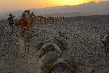 ethiopia_g11749.jpg (Photo: Tom Pfeiffer)