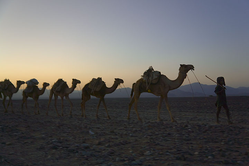 ethiopia_g11786.jpg (Photo: Tom Pfeiffer)